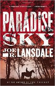 cover of Paradise Sky