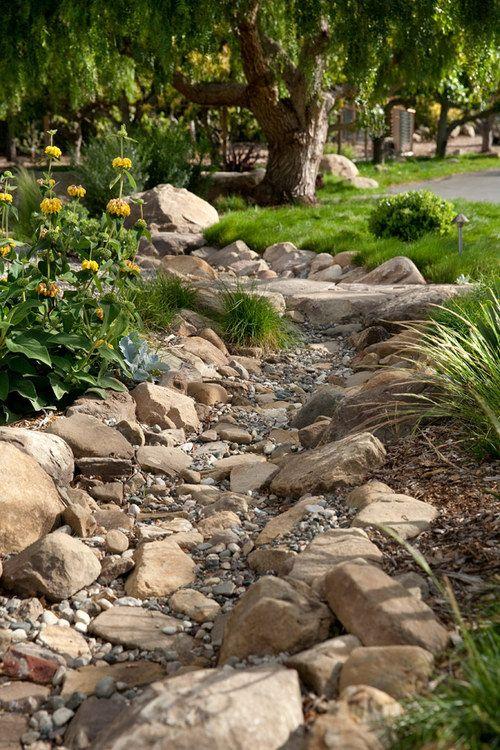 The New California Garden Picture