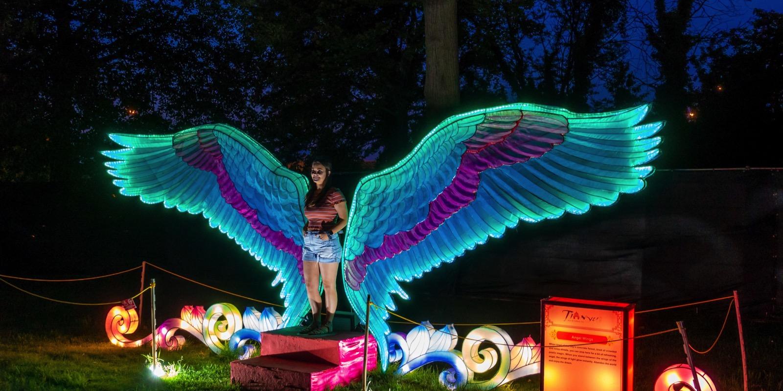 Moonlight Forest – Lantern Art Festival at the Los Angeles